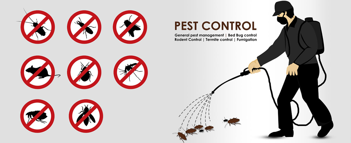 Pest Control Kathmandu Nepal Pest Control Service Orange Ball Pvt Ltd